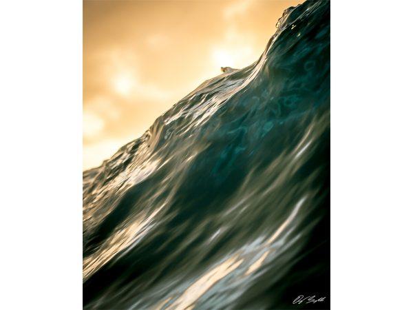 Silky Wave